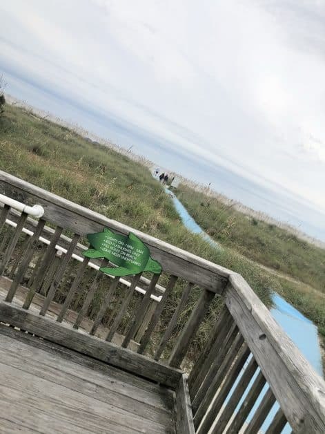 Islander+Beach+Park+Pisces+Tourist